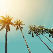 سلسلة موسم الصيف مع سن أند ساند سبورتس