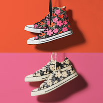 Converse Andy Warhol Collection