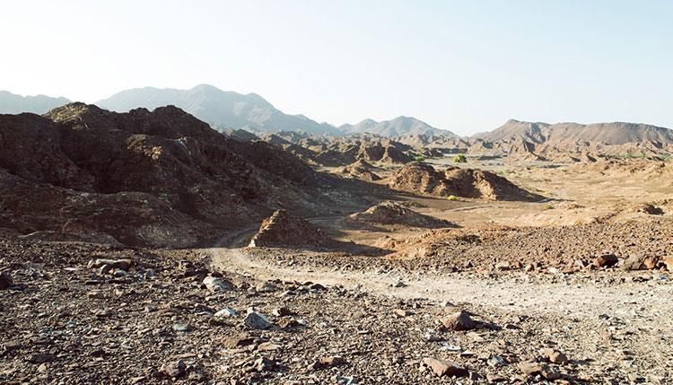 Trail_Run_Abu_Dhabi_UAE
